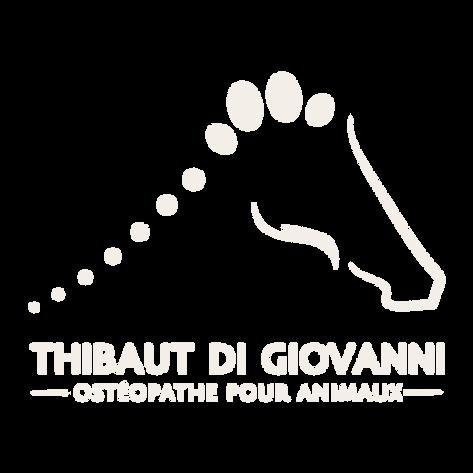 Thibaut Di Giovanni - Ostéopathe