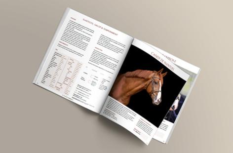 Catalogue GFE 2020