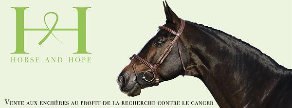 banniere1.jpg