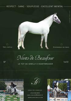 Ninto de Beaufour