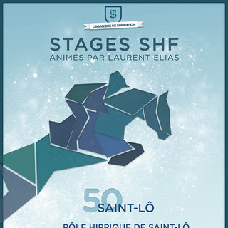 Affiches Stages d'Hiver SHF