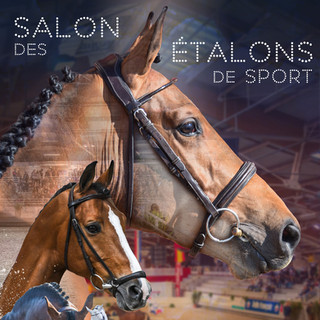 Affiche Salon des Etalons 2020