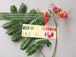 Jacie Isard Botanicals 'Mixing Watercolour Accurately Course for Botanical Artists'