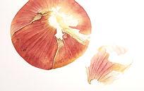 onion painting!!!!!.jpg