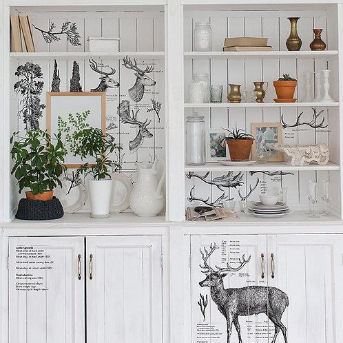 Deer Decor Transfer by Re Design Prima