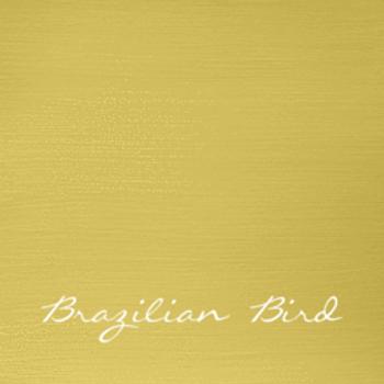 Brazilian Bird