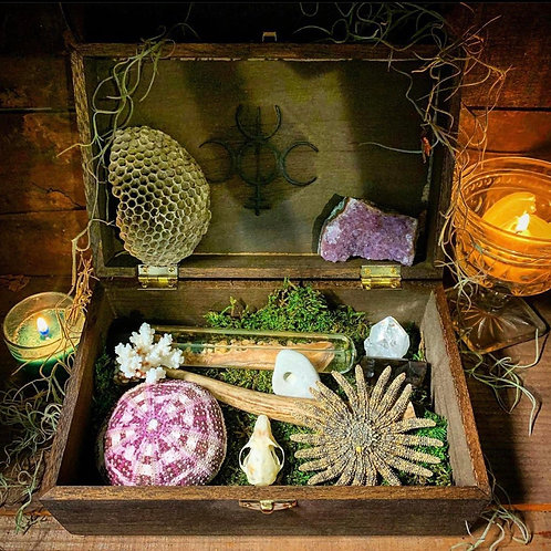 Naturalist Altar Kit
