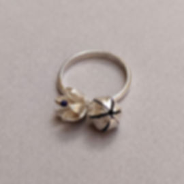 Duality_ Ring with two flowers in moveme