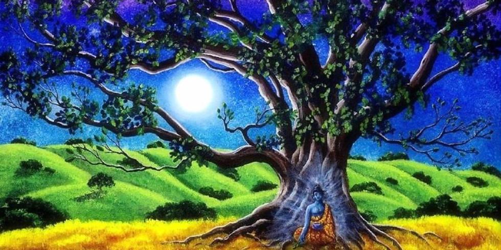 **POSTPONED til NEXT MONTH** Lunar Eclipse/Full Moon Shamanic Drumming Circle