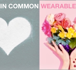 Heart Rate Variability in Common Wearables, What Are Your Choices? Oura, Apple, Garmin, Whoop?