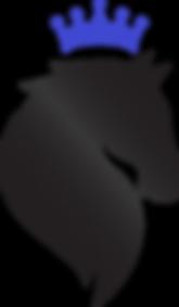 dq_final_Edited_logo.png
