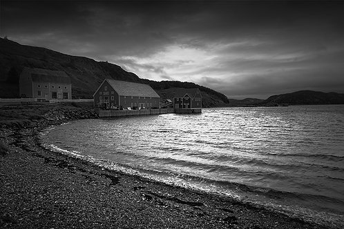 "Trinity Harbour - 11"" x 14"" Matted Print"