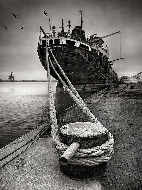 "Hamilton Harbour - 11"" x 14"" Matted Print"