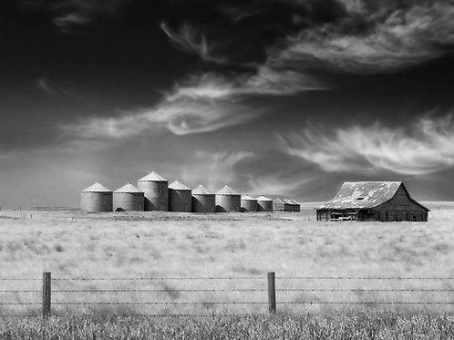 """Ranchlands - 11"""" x 14"""" Matted Print"""
