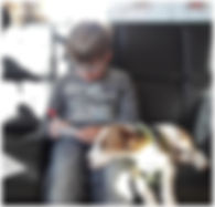 Mathe-Hund.jpg