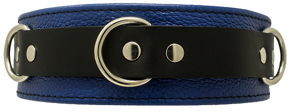 Black and Blue Locking Collar