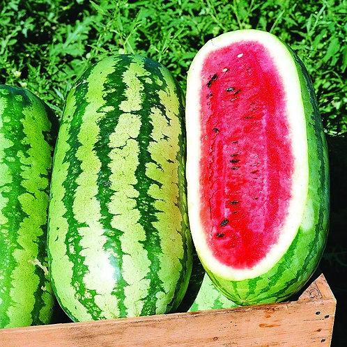 Watermelon Jubilee