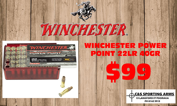 WINCHESTER POWER POINT 40 GR 1280FPS