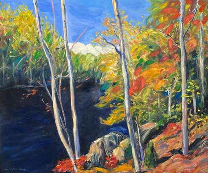 Fall in Northen Ontario 30x36 oil.jpg