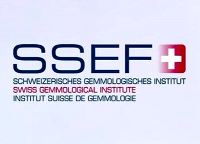NEWS FROM THE SSEF