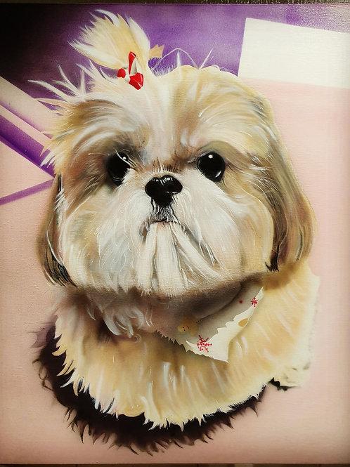 Shih Tzu, Acrylic on canvas (500x400mm)