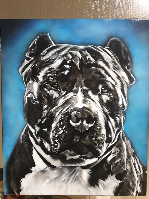 Paco Bluebully, Acrylic on canvas (500x400mm)