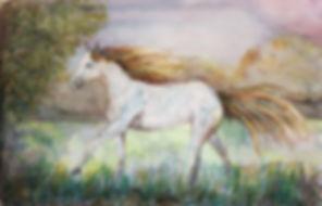 Watercolour Horse.jpg