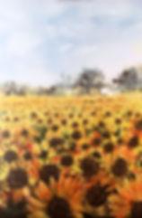 Sunburst - mixed media  29.5 x 39.7cm -