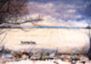 Winter Waylands.jpg