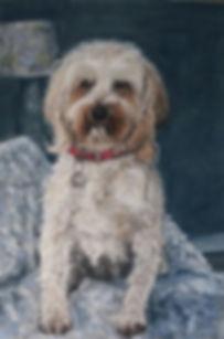 Rosie - Neils Dog.jpg