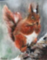 Winters Tail.jpg