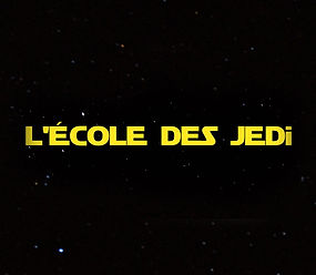 Autisme - École des Jedi - Ado unique, parent unique : Une famille exceptionnelle