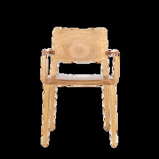 Cadeira Evo Tauari com Braço (2).png