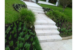 marcia-jardinagem-800x525