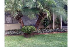 marcia-jardinagem-cartao-programa-vida-800x525