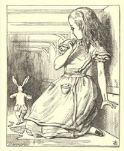 psychosis: becoming alice.