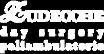 Logo_zudecche_feet.png