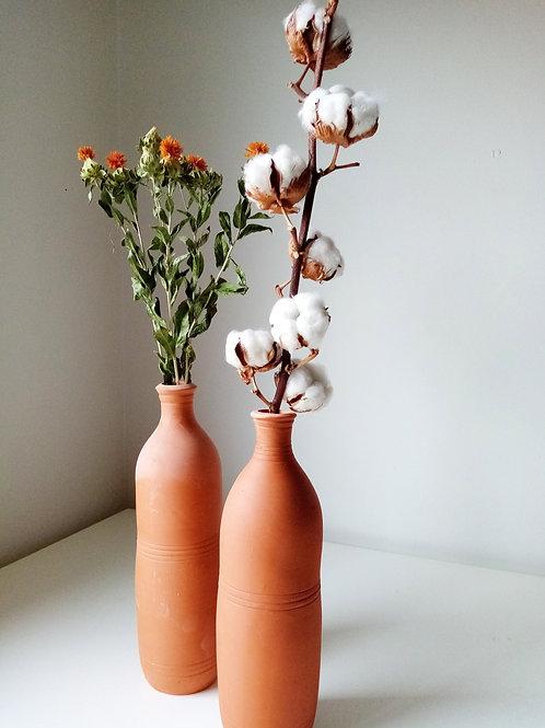 Tige de fleurs de cotons