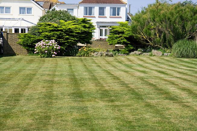 mowed-garden-lawn.jpg