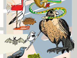 Biobarna ilustrada: calendario solidario