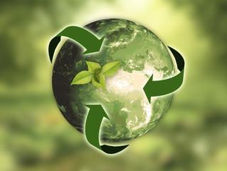 Provita Internacional en el Día Mundial del Reciclaje