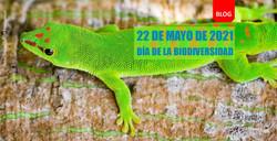 Biodiversidad dia2