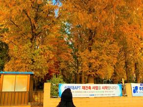 Hiring Season in South Korea