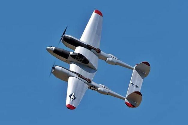 fly6.jpg