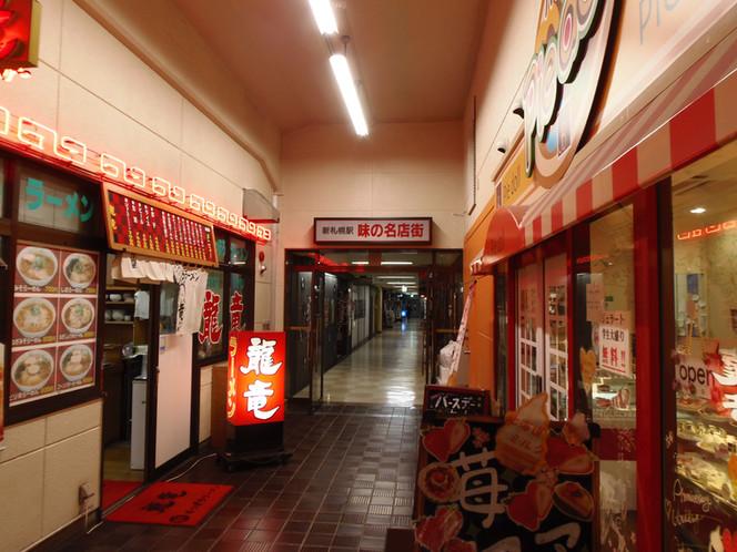 Shin-Sapporo area