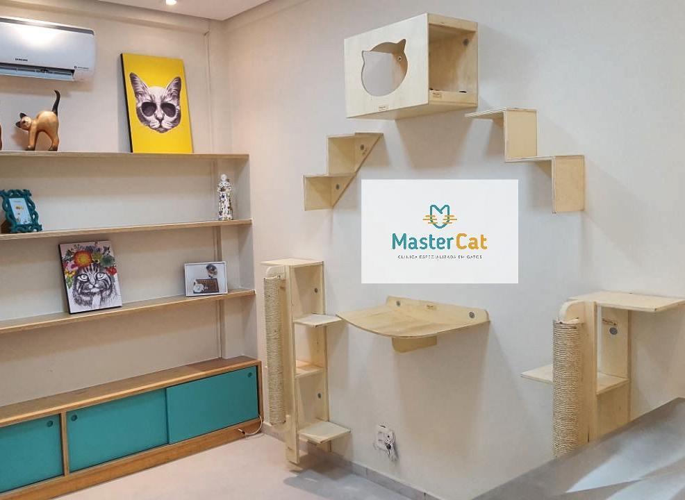mastercat 107_o