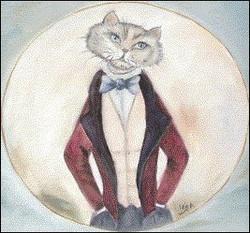 Clínica Sr. Gato