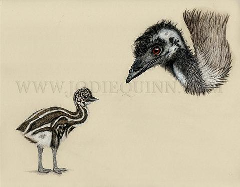 Emu With Chick, Original Artwork