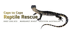 Cape to Cape Reptile Rescue