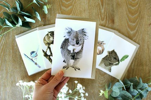 Threatened Fauna Greeting Card Collection